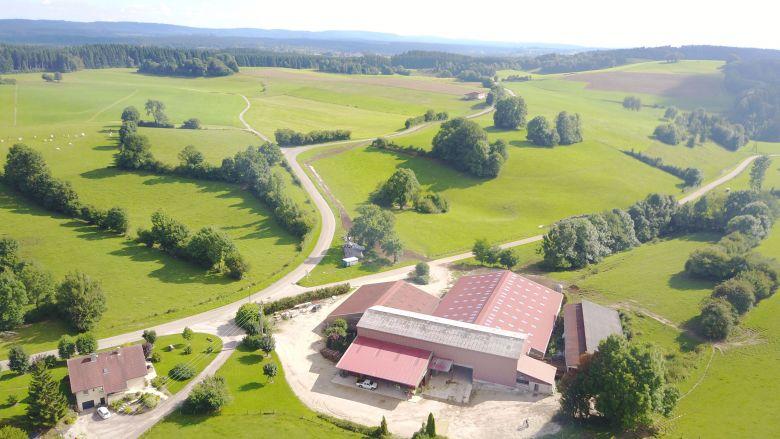 Cette exploitation de Gevresin (Doubs) a déjà dû jeter 4000L de lait à comté. / © DR
