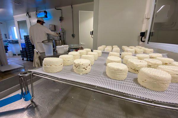 Une petite partie de la production de fromages bio. Au fond, Jean-Pierre confectionne des yaourts.
