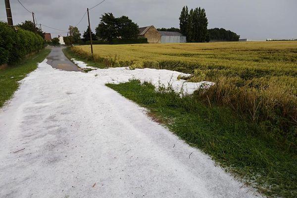Plus de trois centimètres de grêle ont parfois été recensés dans les champs.